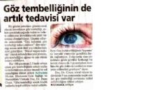 Milliyet,</br>Göz Tembelliğinin de...</br>22.11.2010